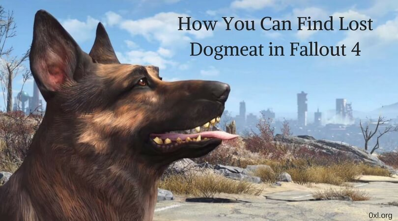 How You Can Find Lost Dogmeat in Fallout 4 (1)
